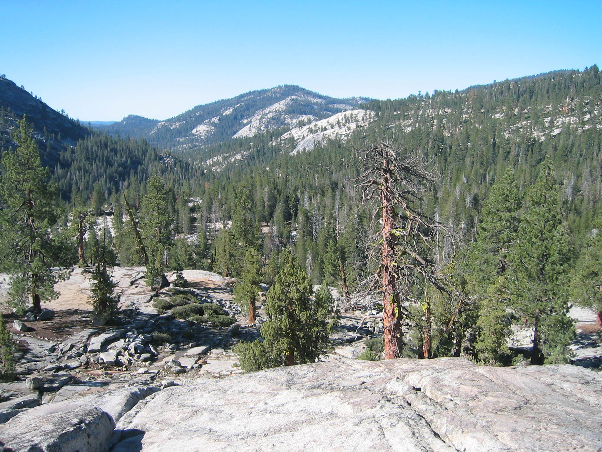 Yosemite Creek Yosemite-creek-confluence.jpg